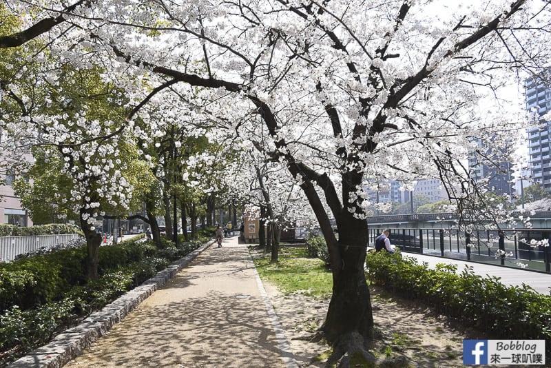 enkoh-bridge-sakura-38