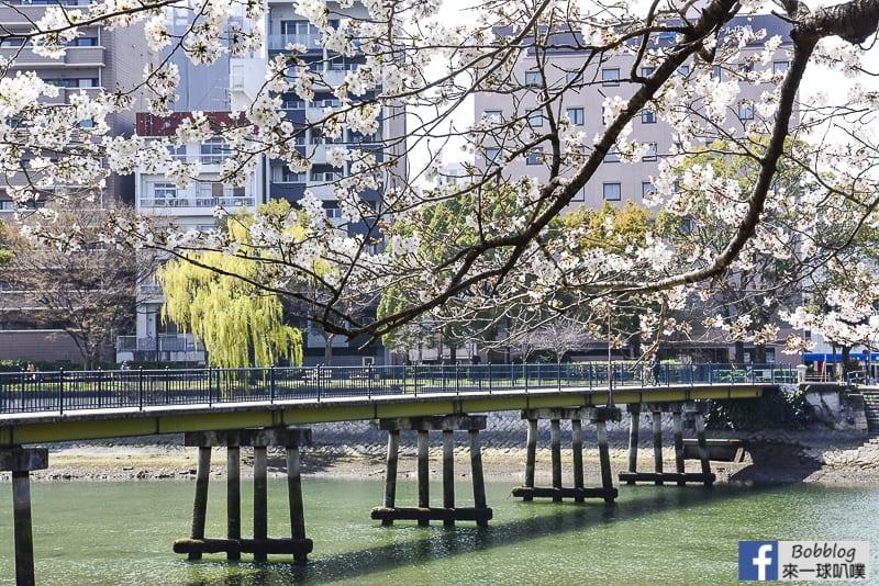 enkoh-bridge-sakura-40