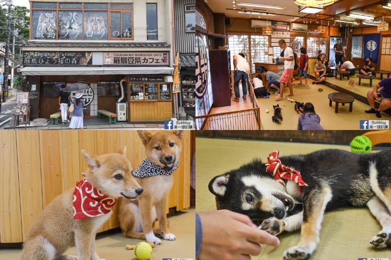 網站近期文章:日本豆柴咖啡廳|宮島豆柴咖啡廳(可愛柴柴,飲料暢飲)