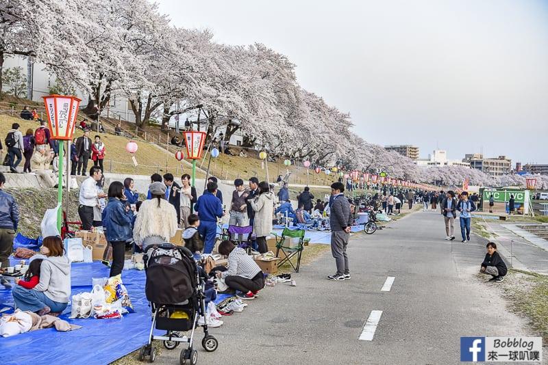 Asahi-River-Sakura-Road-20