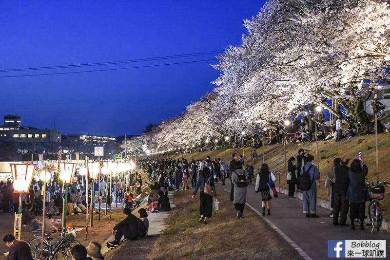 Asahi-River-Sakura-Road-30