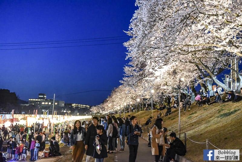 Asahi-River-Sakura-Road-34