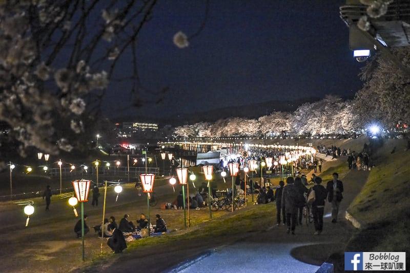 Asahi-River-Sakura-Road-37