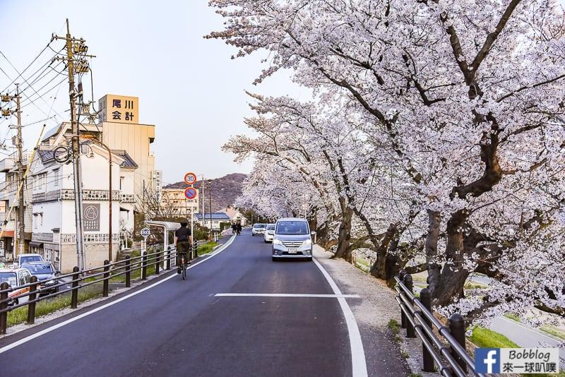 Asahi-River-Sakura-Road-6