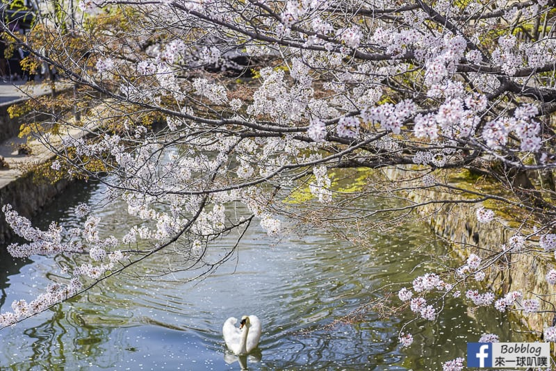 Kurashiki-Bikan-Historical-Area-36