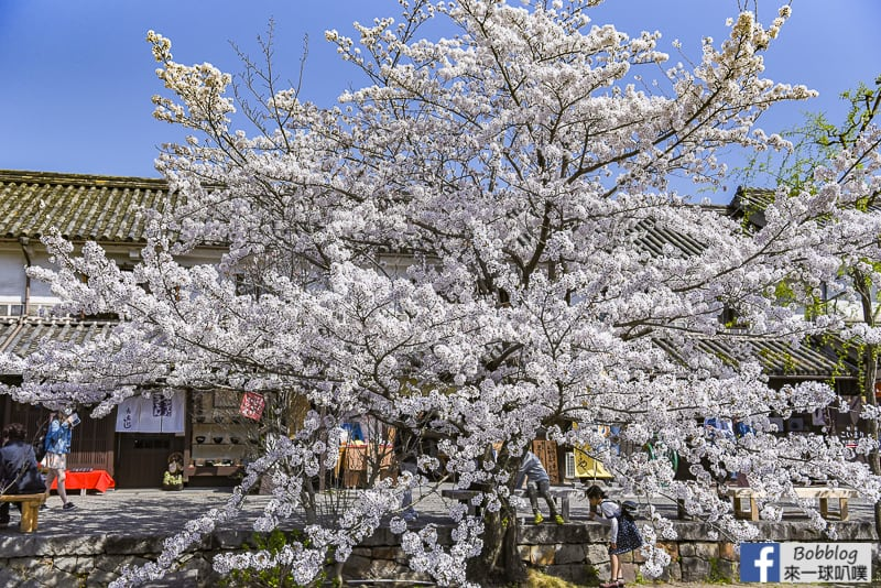 Kurashiki-Bikan-Historical-Area-62