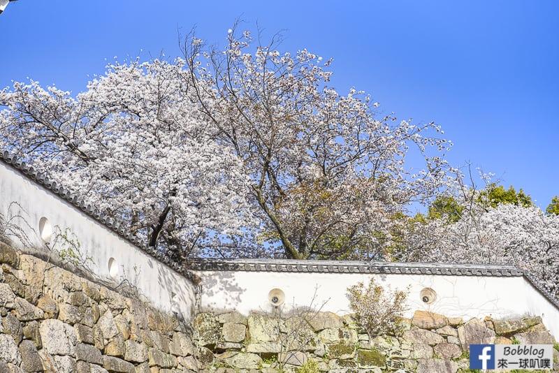 okayama-castle-34