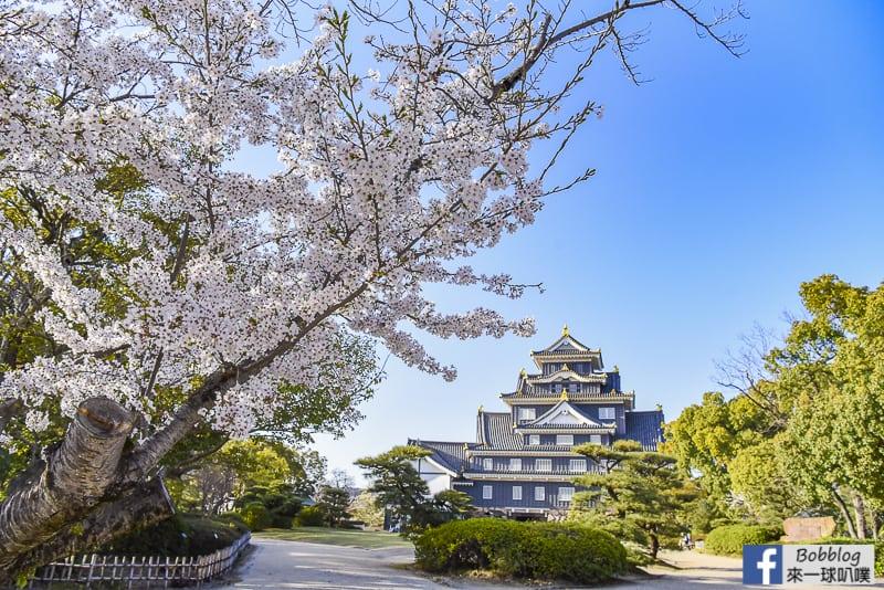 okayama-castle-37