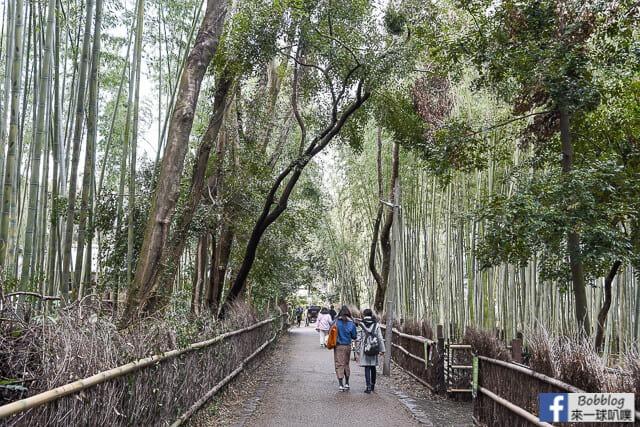 京都嵐山人力車-41