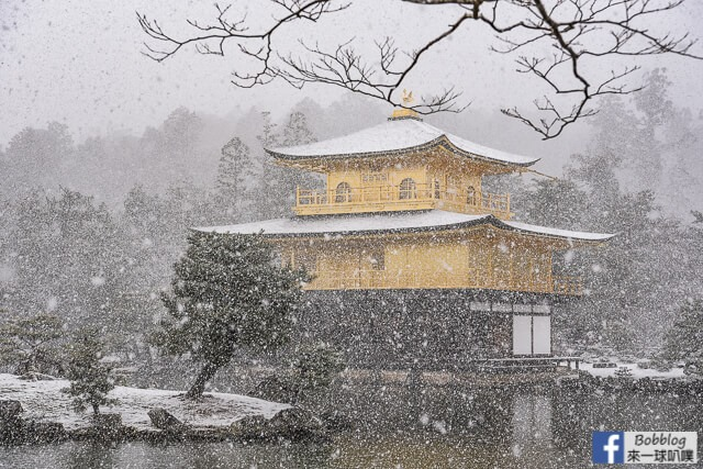 京都金閣寺-雪金閣-46