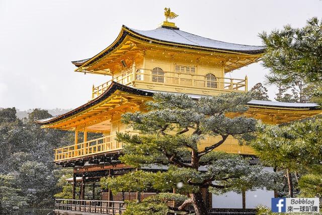 京都金閣寺-雪金閣-70