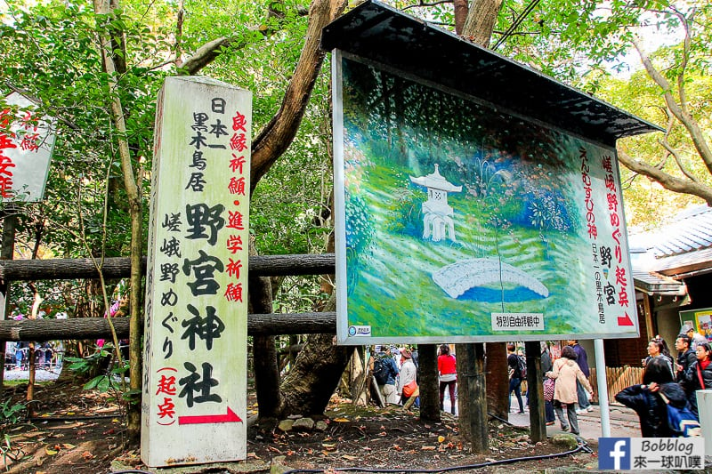 Arashiyama-Bamboo-Forest_-11