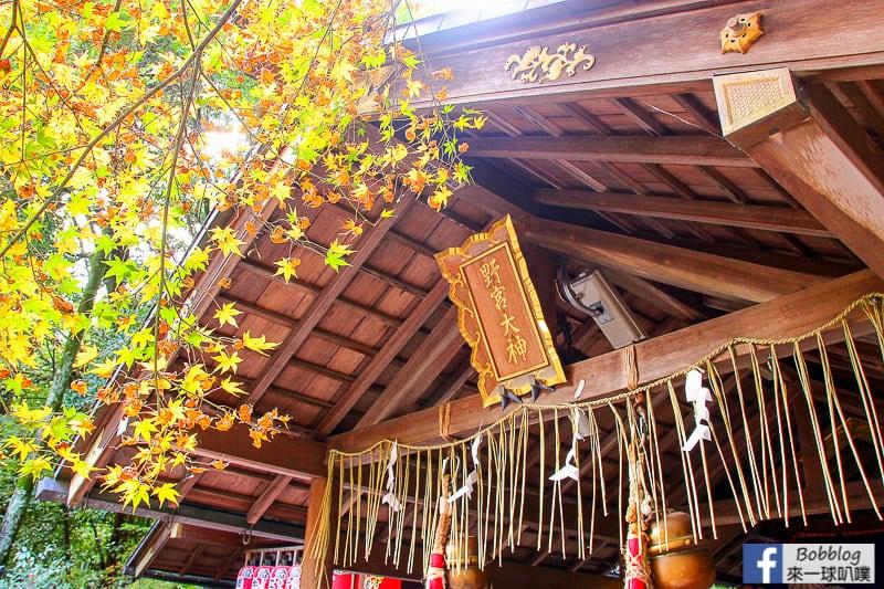 Arashiyama-Bamboo-Forest_-16
