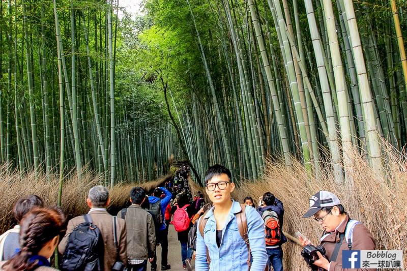 Arashiyama-Bamboo-Forest_-5