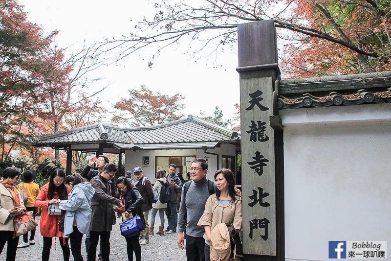 Arashiyama-Bamboo-Forest_