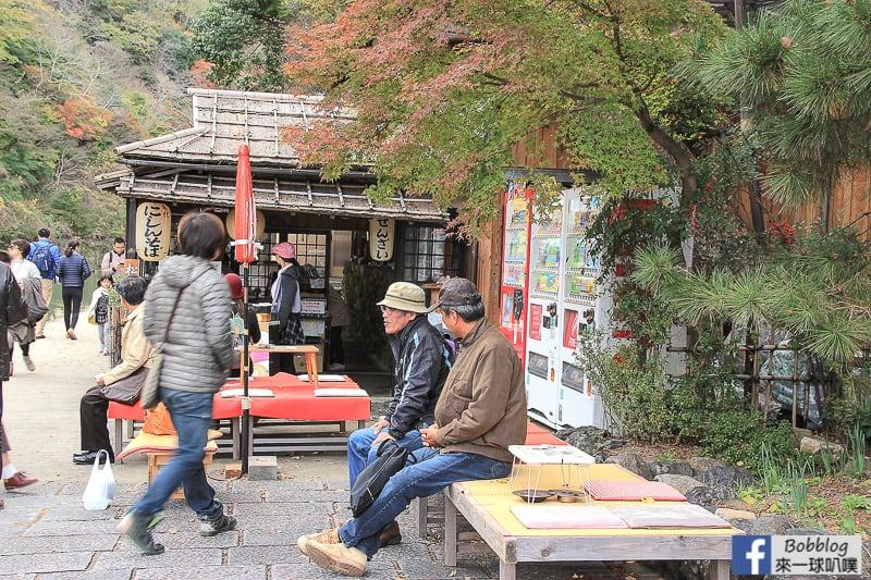 Arashiyama-park-12