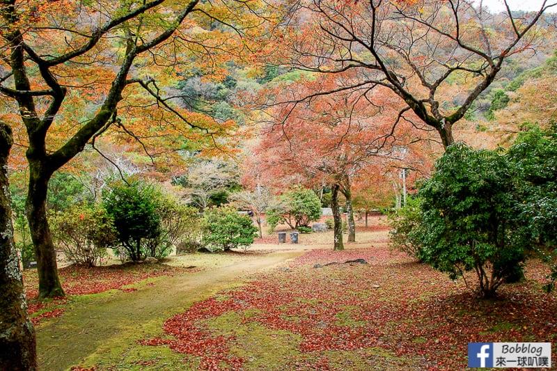 Arashiyama-park-17