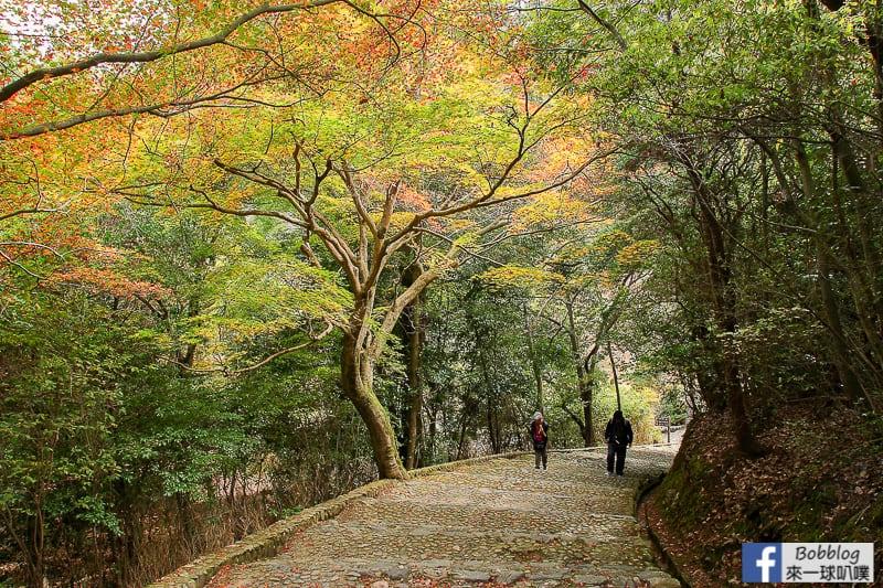 Arashiyama-park-22