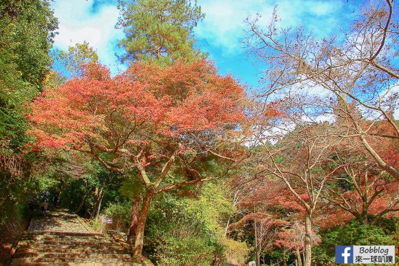 Arashiyama-park-24