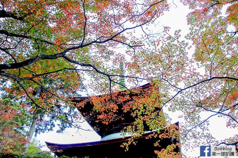 Jojakko-ji-Temple-25