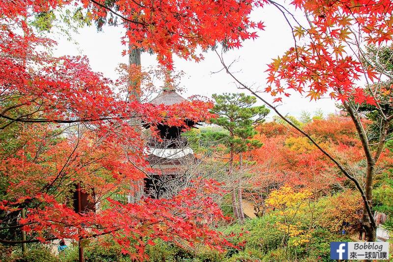 Jojakko-ji-Temple-27
