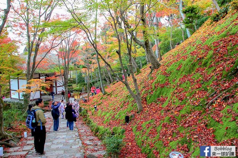 Jojakko-ji-Temple-31