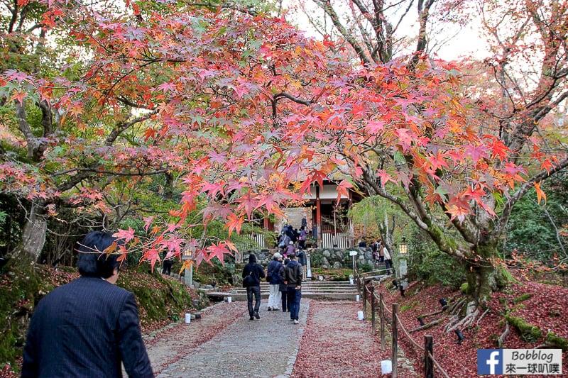 Jojakko-ji-Temple-4