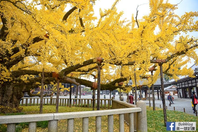 Nishi-Honganji-Temple-5