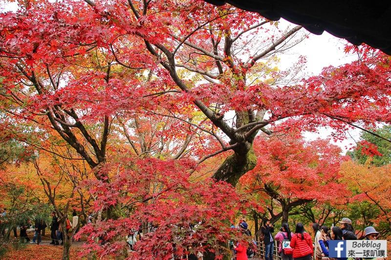Tofukuji-Temple-25