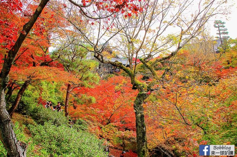 Tofukuji-Temple-55