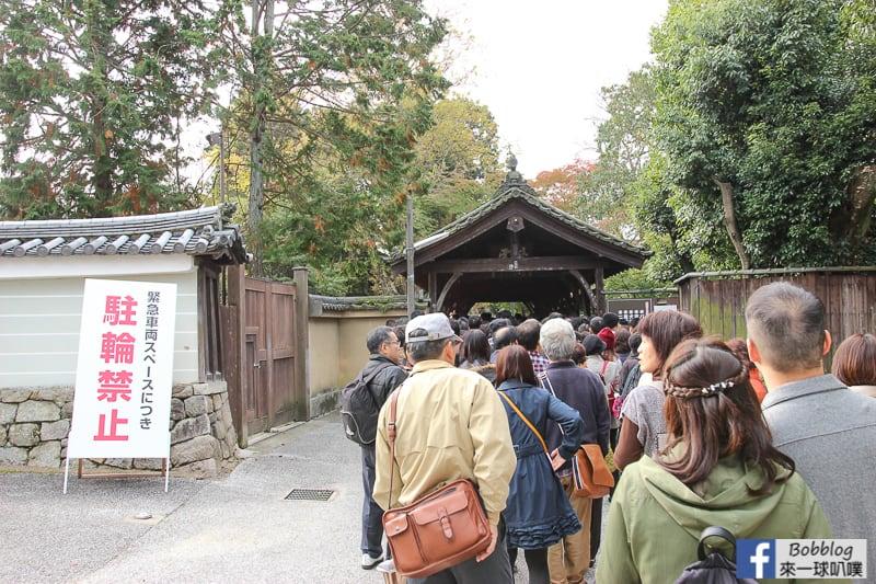 Tofukuji-Temple-9