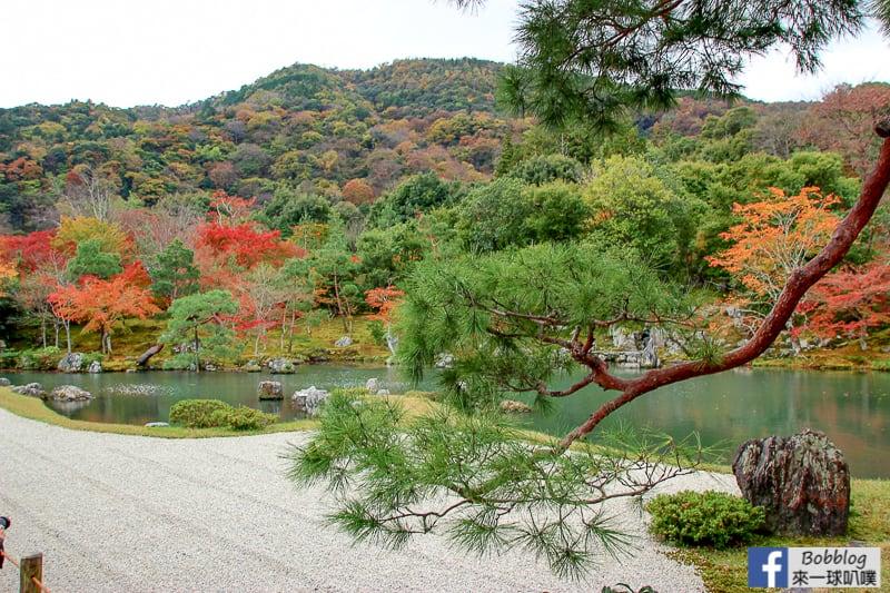 tenryuji-temple-20