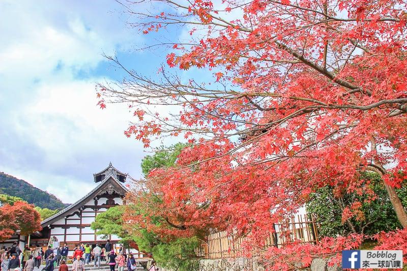 tenryuji-temple-6