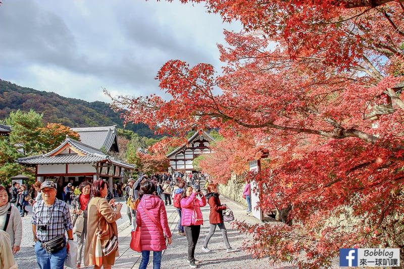 tenryuji-temple