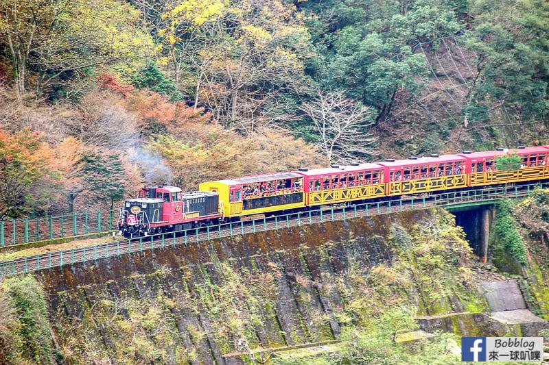 Hozukyo-station-maple-13