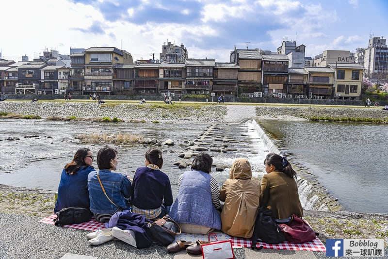 Kamogawa River sakura-23