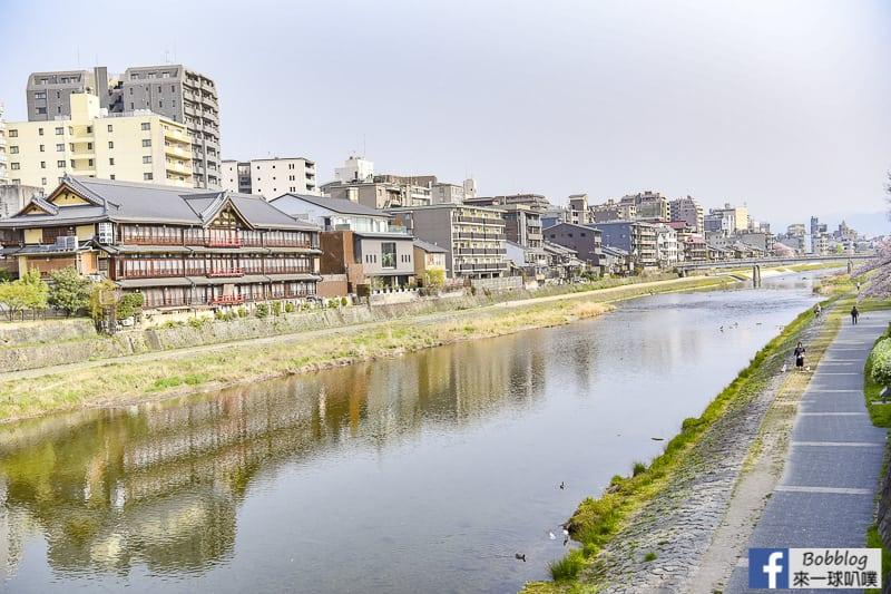 Kamogawa River sakura-43
