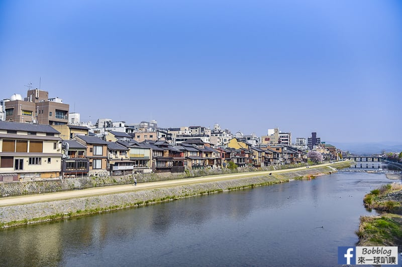 Kamogawa River sakura-47