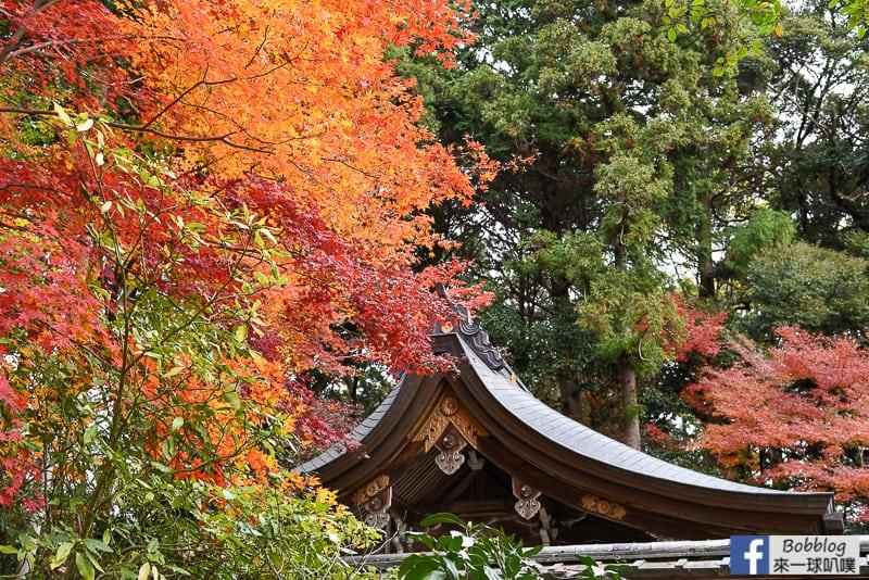 lusen-shrine-7