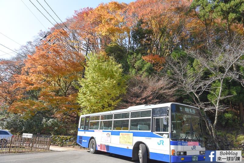Kosanji-Temple-4