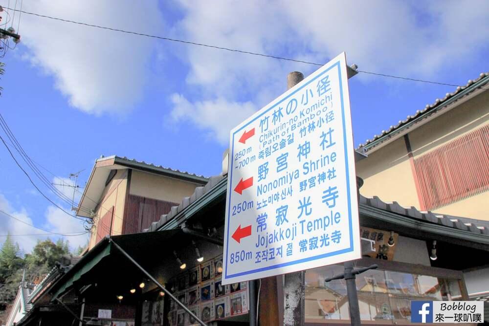 京都嵐山竹林小徑(嵐山必去超美竹林、拍美美照片)