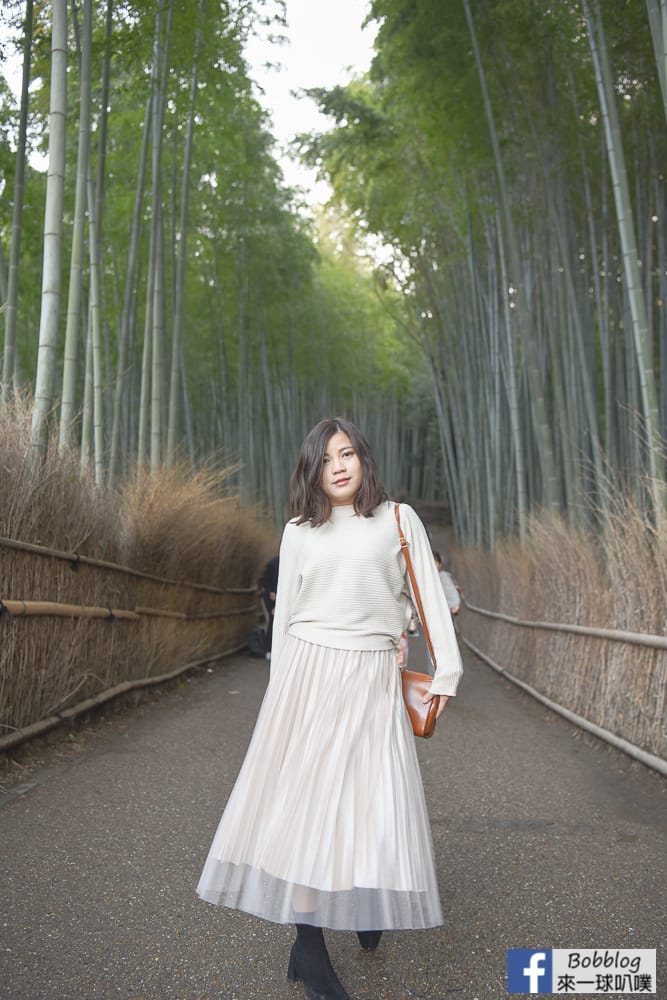 kyoto-arashiyama-bamboo-grove-12