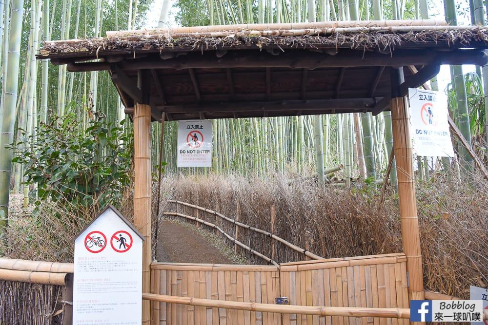 kyoto-arashiyama-bamboo-grove-2
