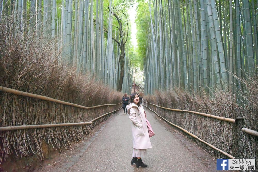 網站近期文章:京都嵐山竹林小徑(嵐山必去超美竹林、拍美美照片)