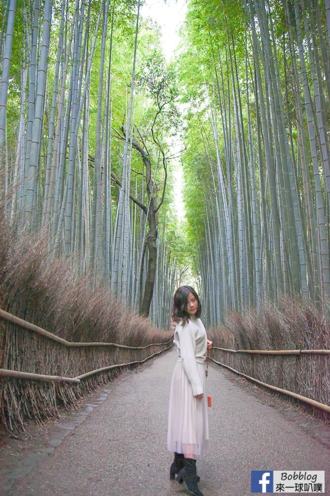 kyoto-arashiyama-bamboo-grove-26