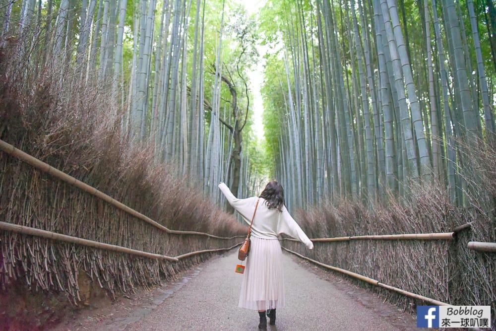 kyoto-arashiyama-bamboo-grove-30