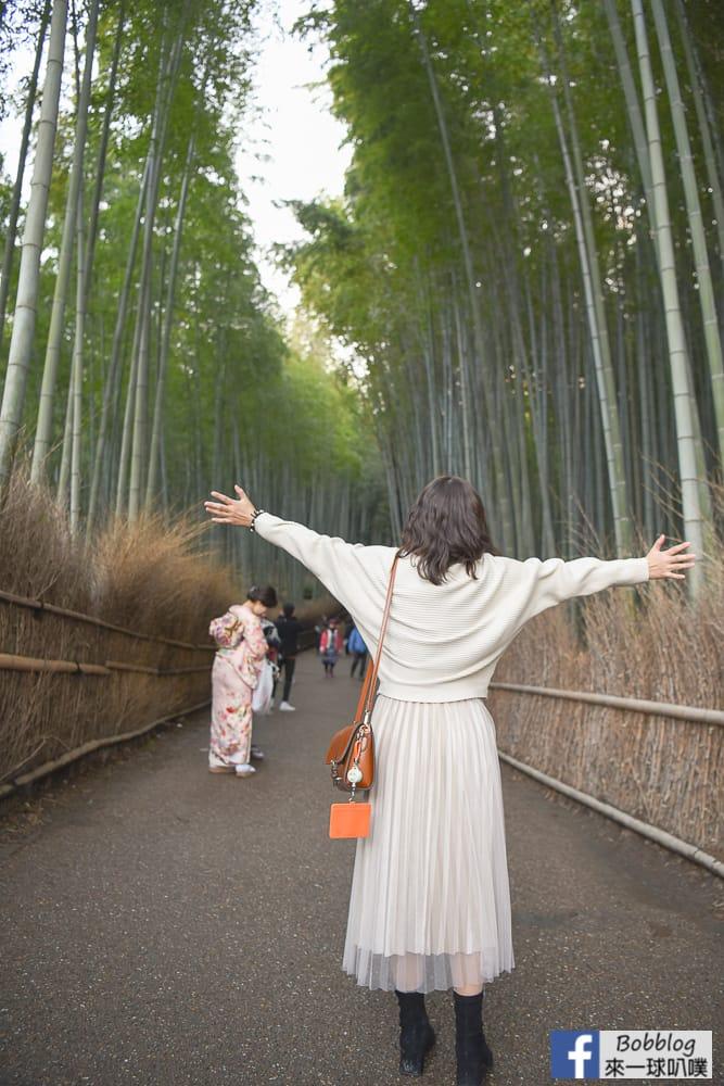 kyoto-arashiyama-bamboo-grove-8