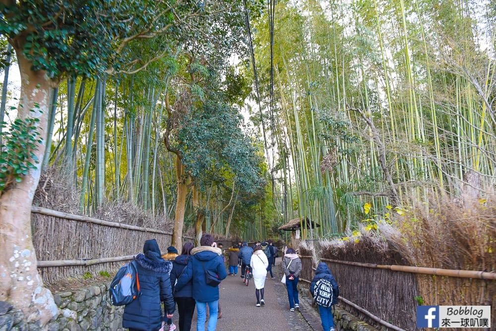 kyoto-arashiyama-bamboo-grove