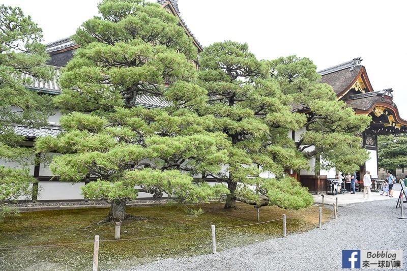 kyoto-Nijo-Castle-13