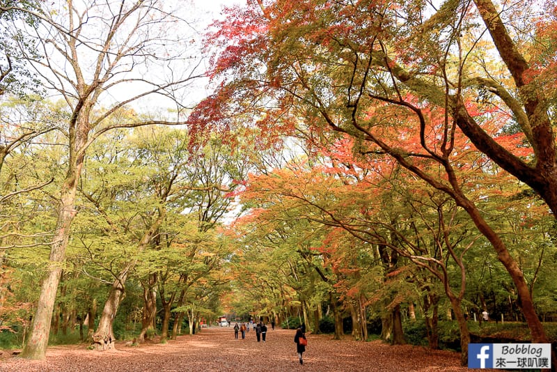 Shimogamo-Shrine-17